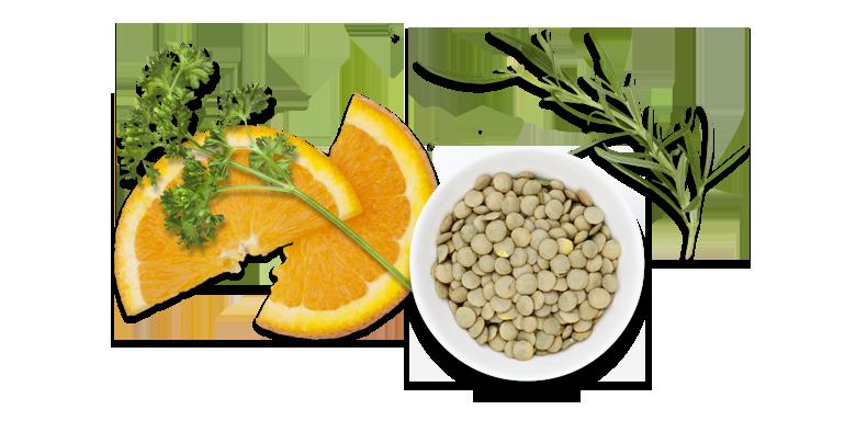 Lachs-roh-mariniert-Aromen-kombinieren-Rezepte-Lachstatar-Linsen