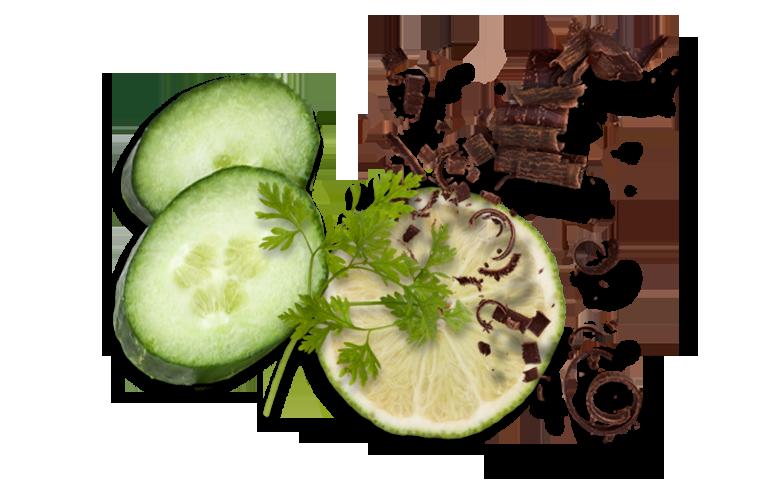 Aromen-kombinieren-Rezepte-Fisch-Schokolade-Limette-Gurke