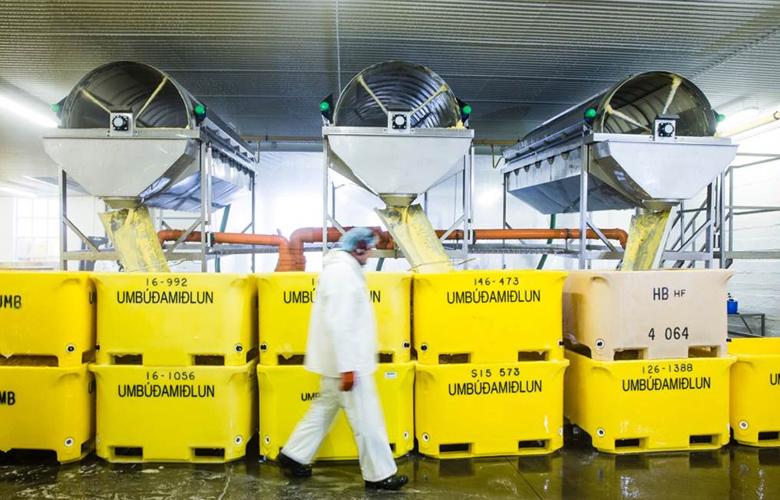 Walfang-beenden-Auf-Betreiben-von-Deutsche-See-wird-in-dieser-Halle-nie-wieder-Walfleisch-verarbeitet
