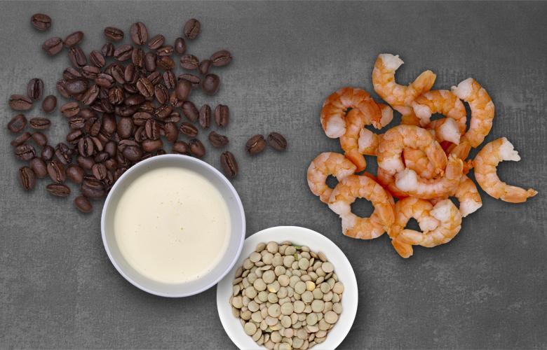 Aromen-kombinieren-Fisch-Kaffee-Sahne-Linsen