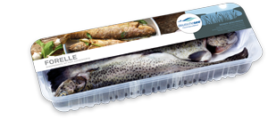 Frischer-Fisch-aus-dem-Kuehlregal-Forelle-Produkte-Spezialitaeten