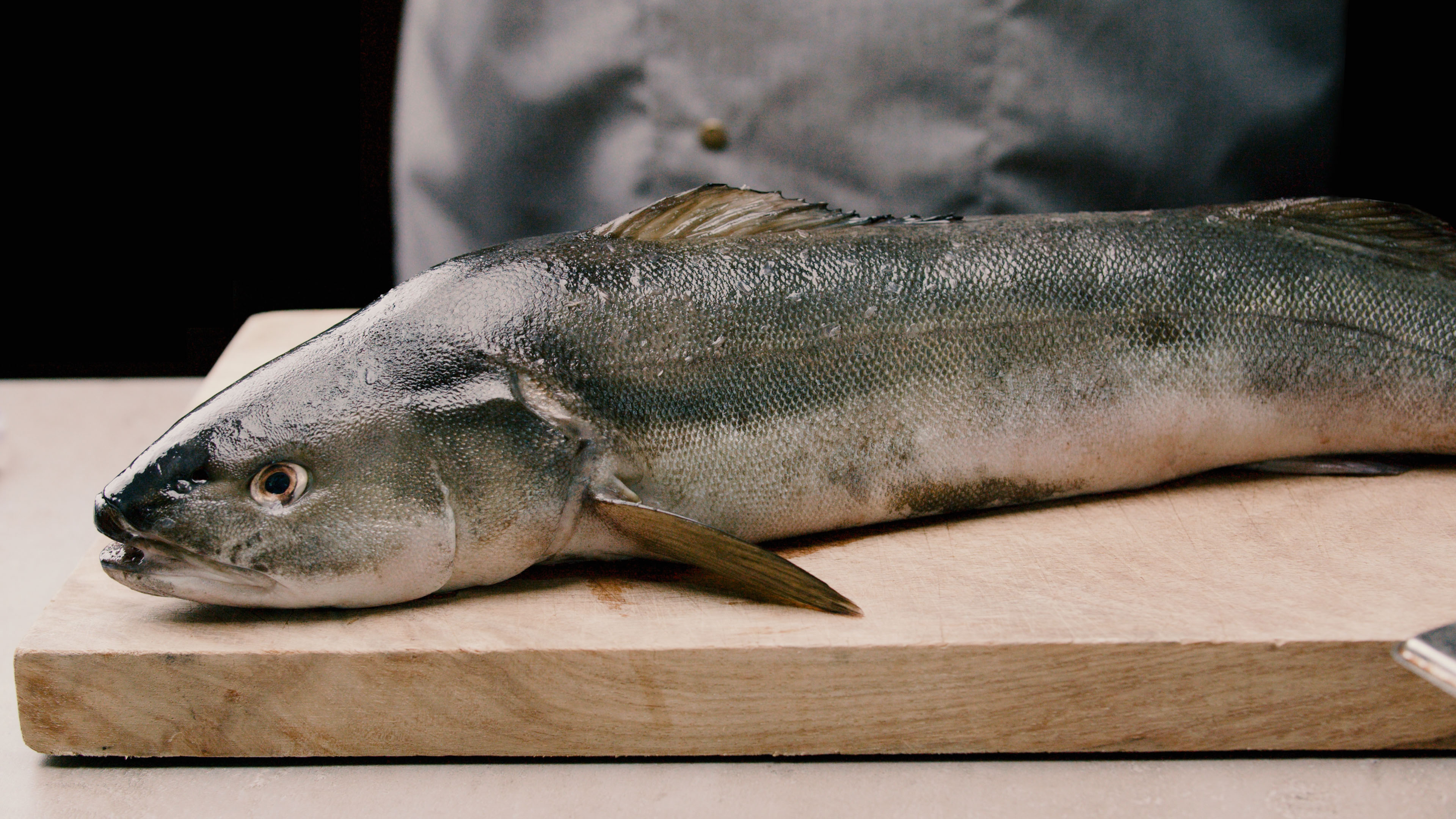 Black-Cod-Kohlenfisch-Produkt-Aufmacher