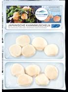 In-der-Tiefkuehltruhe-Japanische-Kammmuscheln-Produkte-Spezialitaeten