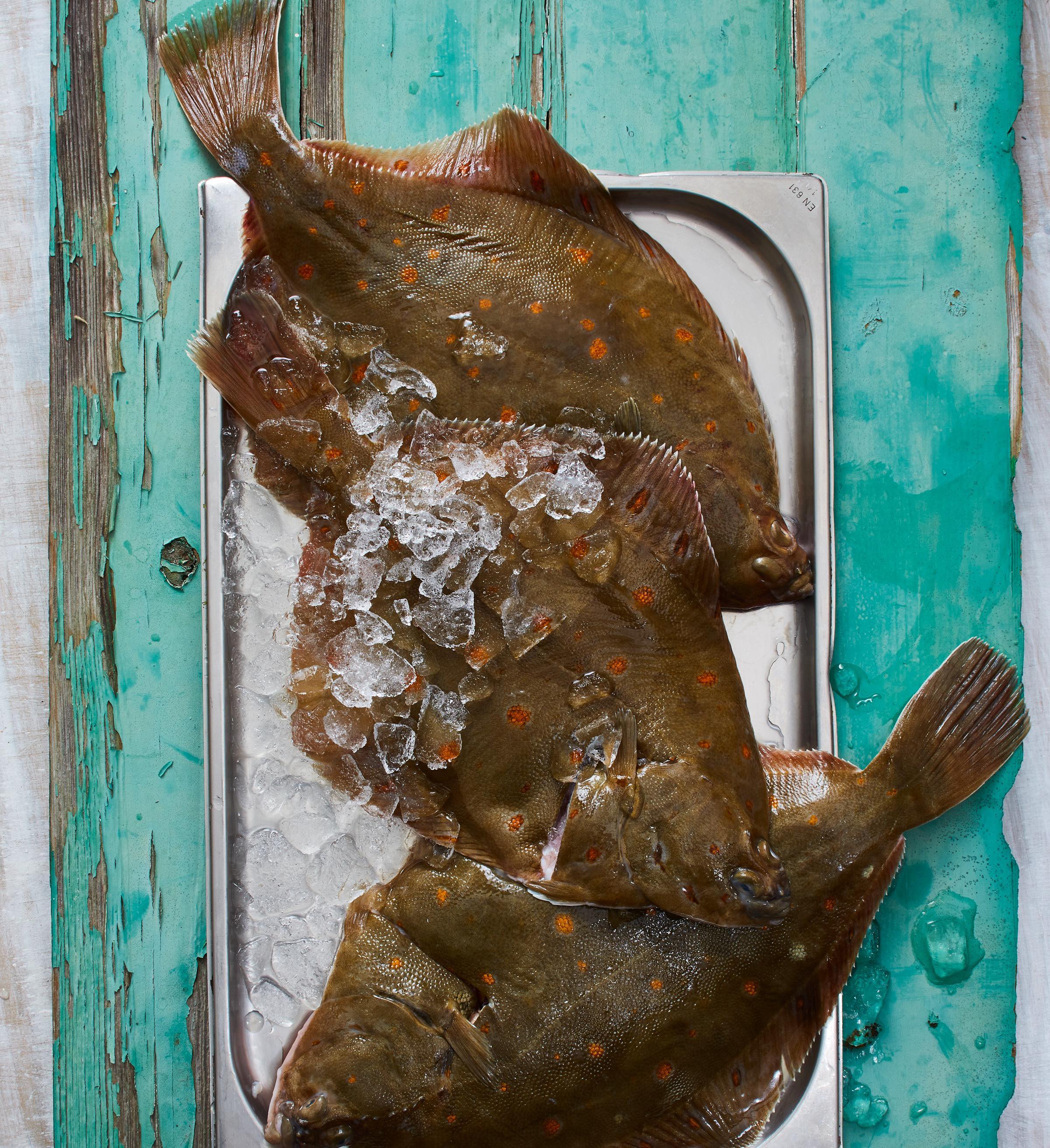 Austern-Tartar mit Algen