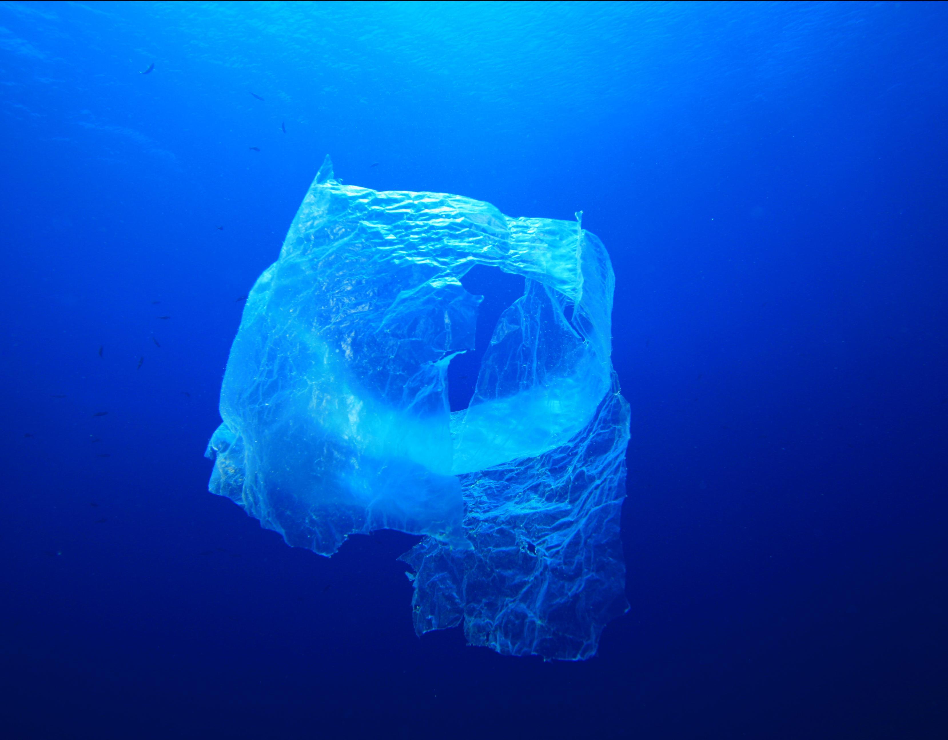 Wir tun was gegen Meeresmüll
