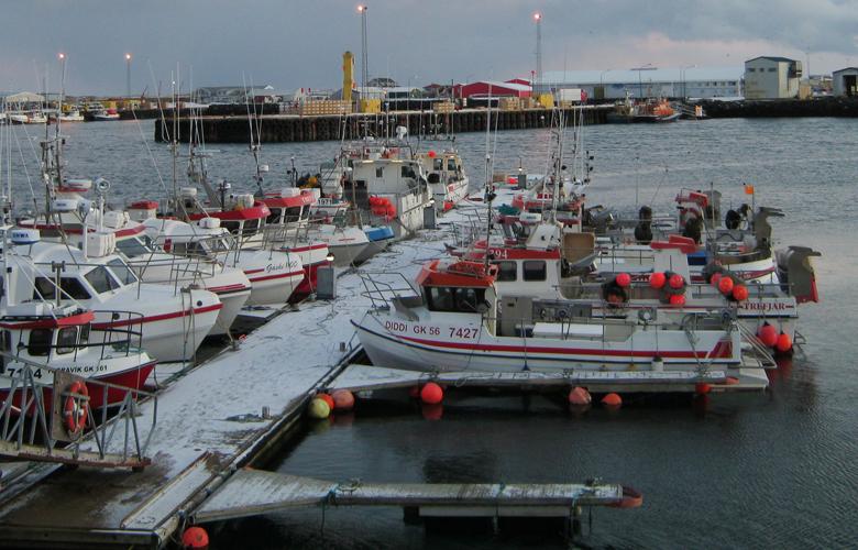 Kabeljau-Herkunft-Produkte-Fische-780x500