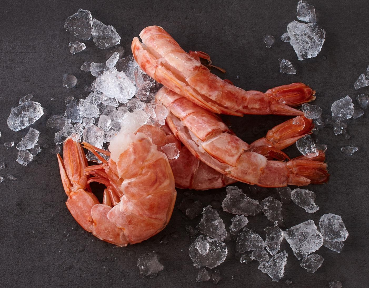 Argentinische Rotgarnelen · groß · easy peel jetzt kaufen!