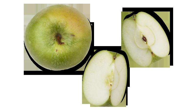 Aromen-kombinieren-Rezepte-Fisch-Apfel-Kueche