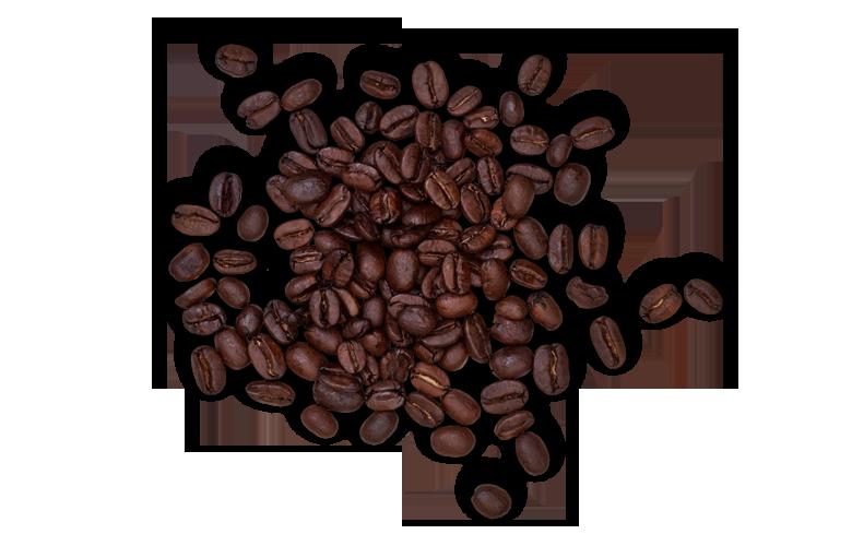 Aromen-kombinieren-Fisch-Kaffee-Kaffeebohnen