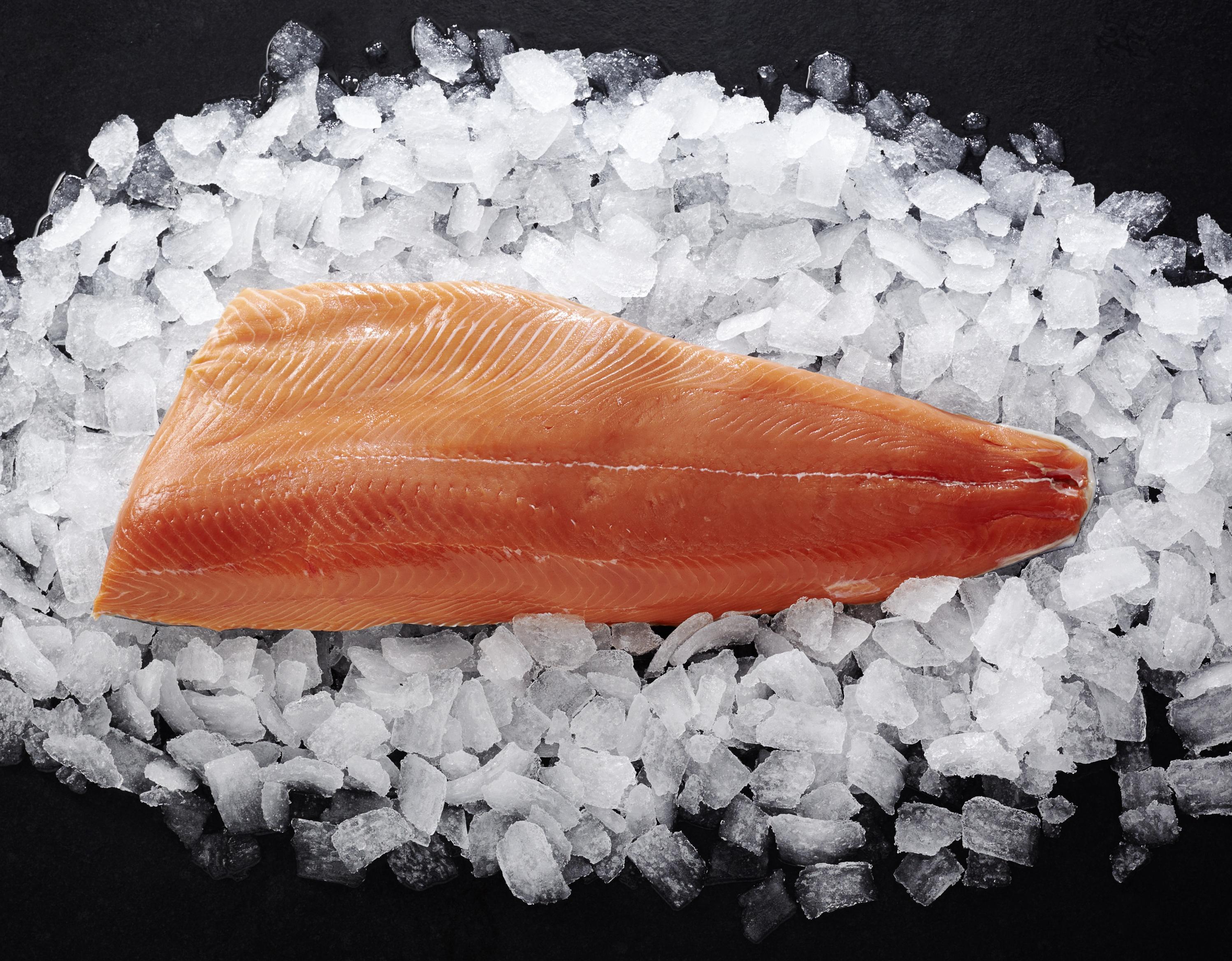 Red King Salmon-Filet