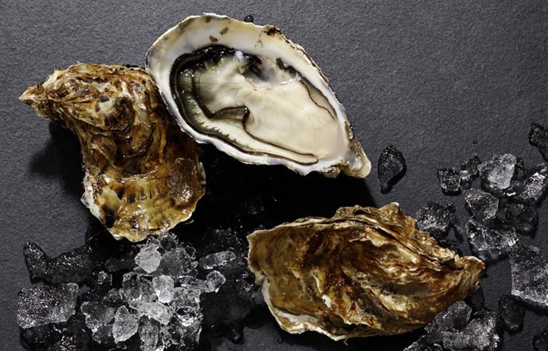 Austern-Wissen-Fischspezialitaeten-Kleine-Muschelkunde-780x500