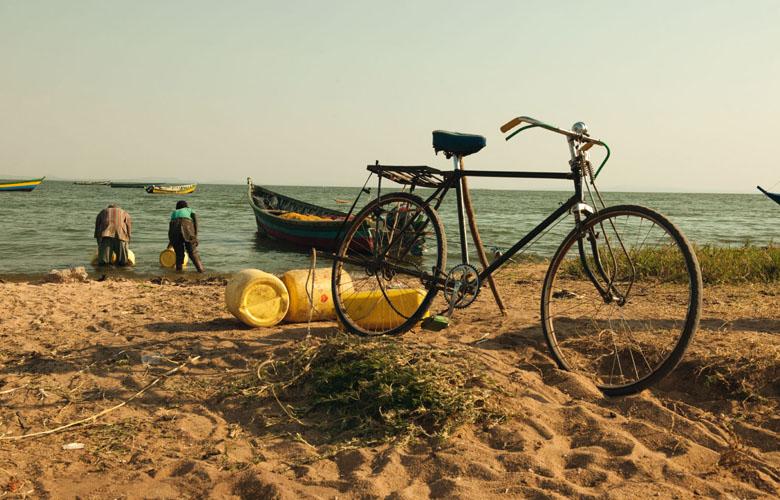 Die-Generation-Barsch-Strand-DeutscheSee