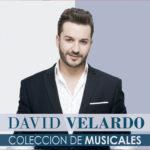 ARTISTA_David_Velardo_Coleccion_De_Musicales
