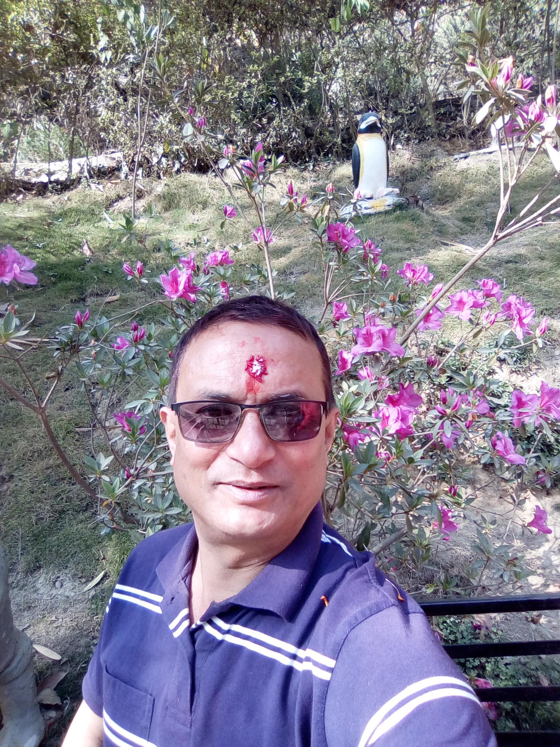 Dharmendra Lal Shrestha