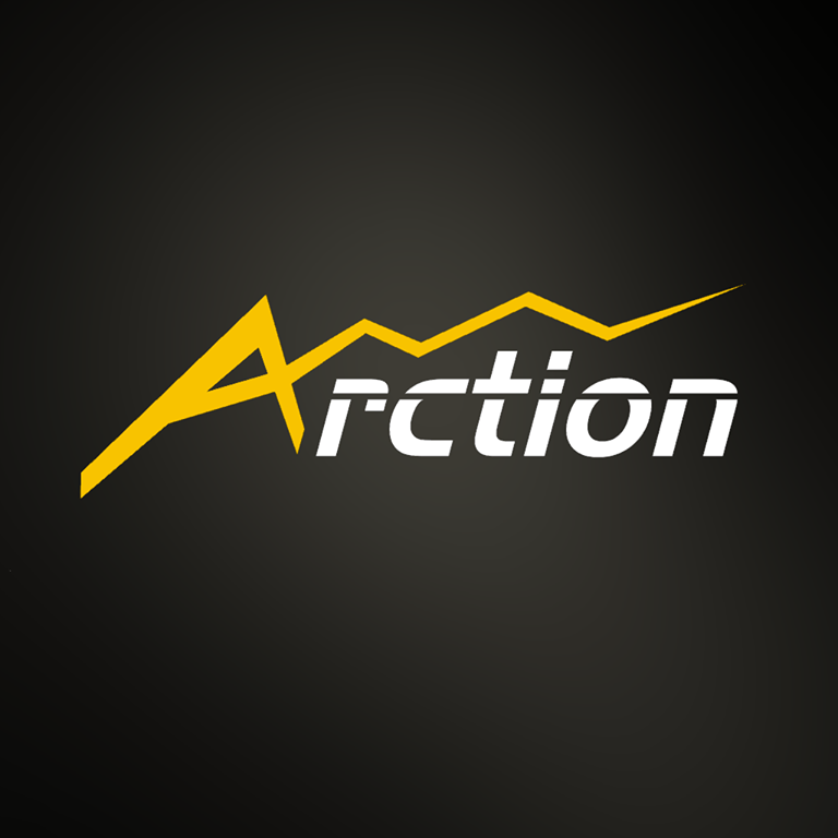 Arction  Ltd