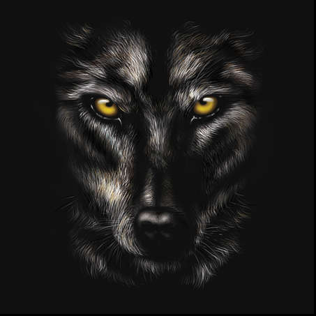 Its Me Wolf