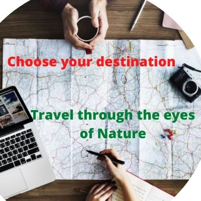 Travel through the eyes of nature.