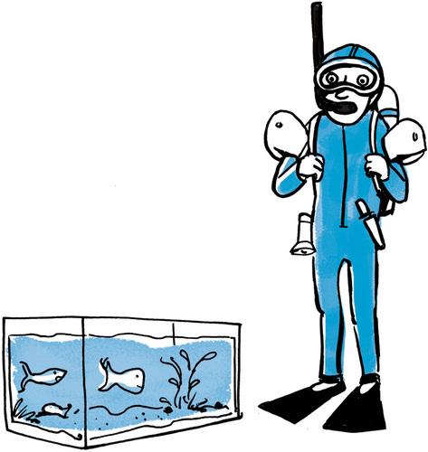 Plongeur devant l'aquarium