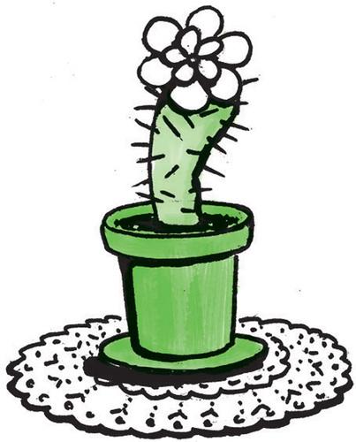 Kaktus in Blumentopf