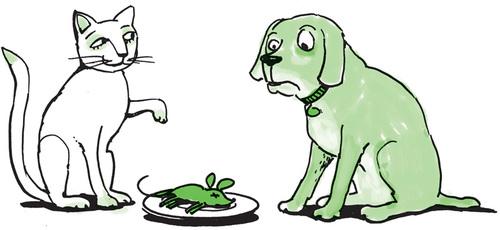 Katze und Hund mit Maus auf Teller