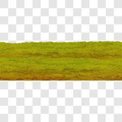 Grass Layer