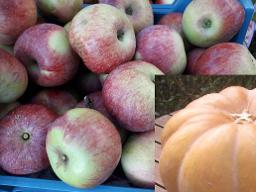 Apfel-Kürbis-Chutney