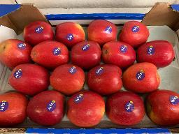 Äpfel: Jazz