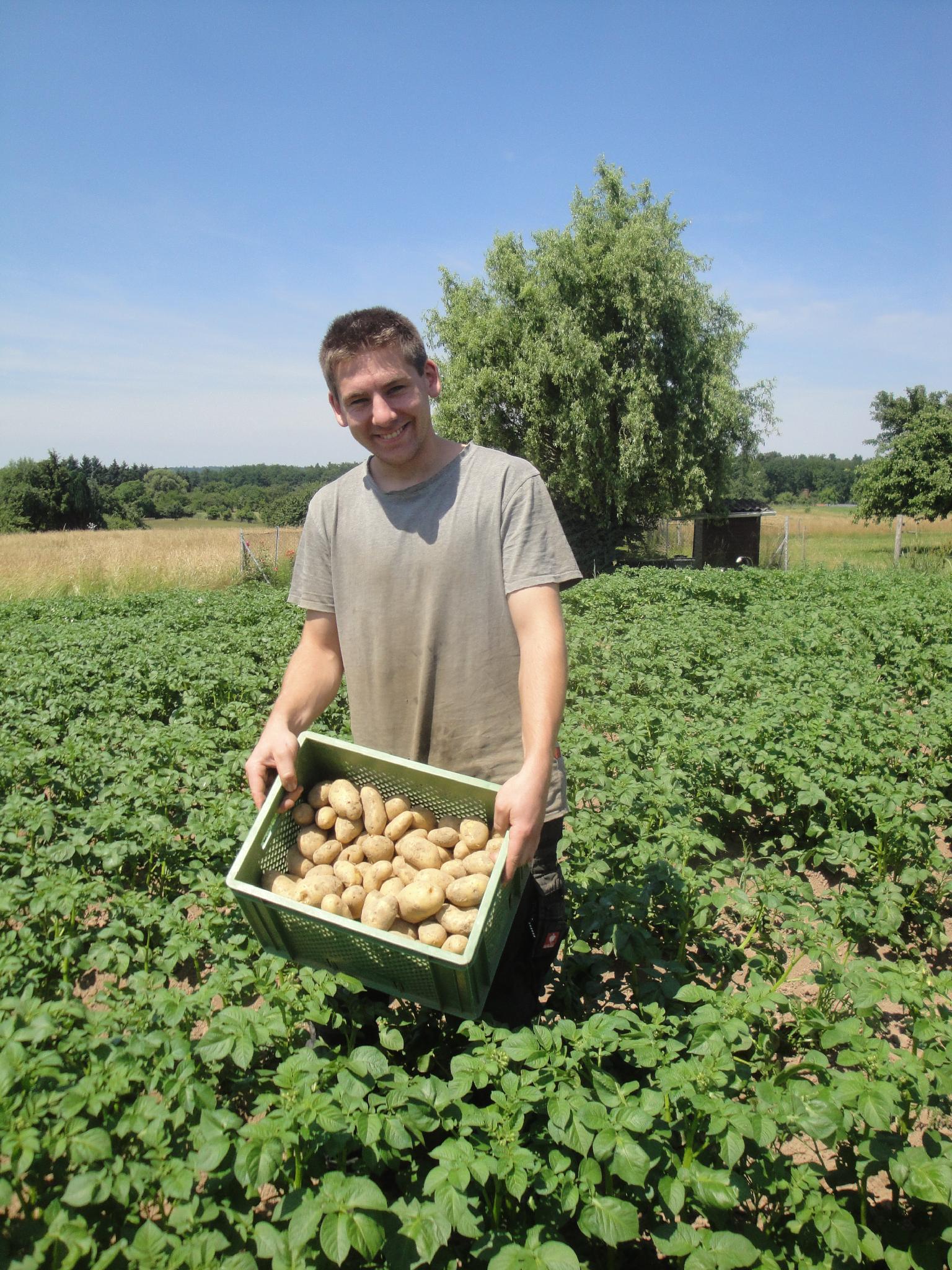Kartoffeln 2,5 kg