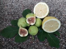 Feigen-Zitronen-Chutney