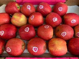 Äpfel: Pink Lady