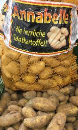 Annabelle: deutsche Frühkartoffeln