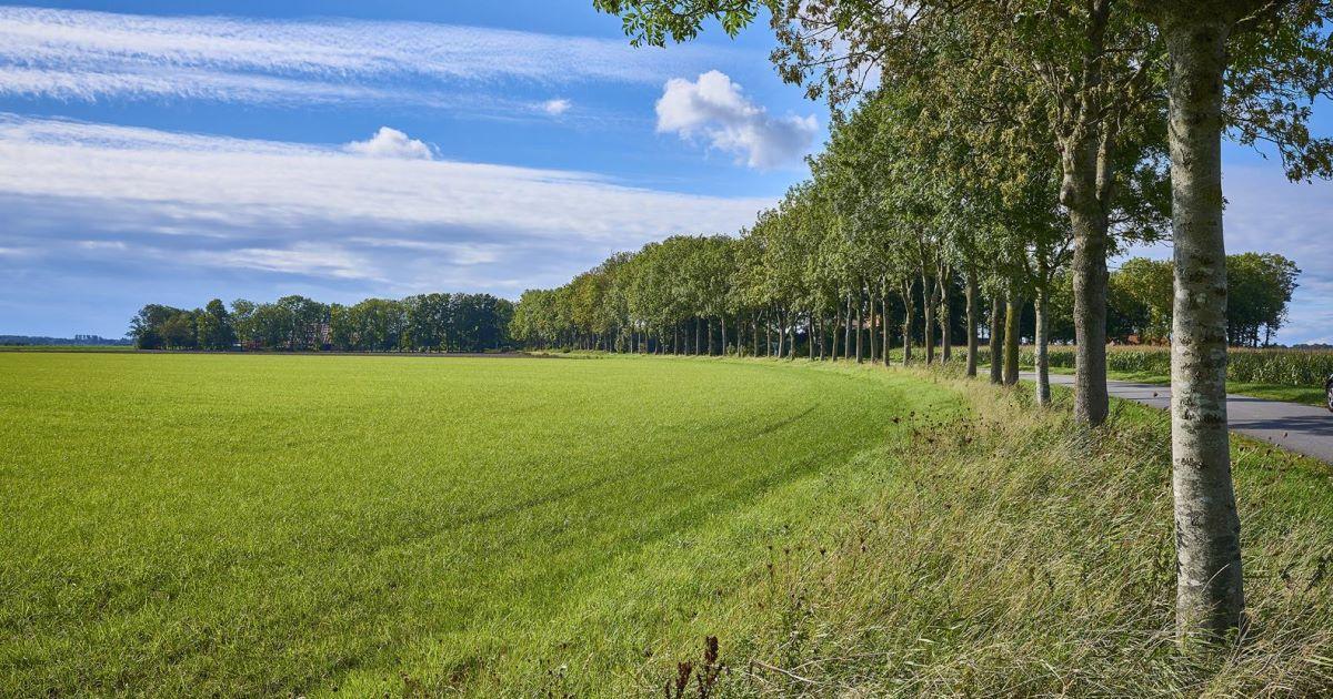 Landschap Weg Jan Hoogweg 30