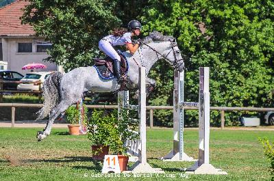 Crumble Fox Futur Elite 7 ans Cluny