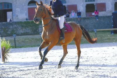 Poulbert jump - Hennebont 2020