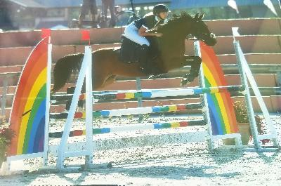 PONEY E 1, SOLOGN PONY 2018