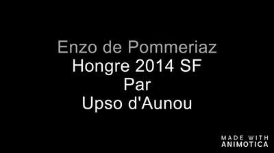 ENZO DE POMMERIAZ