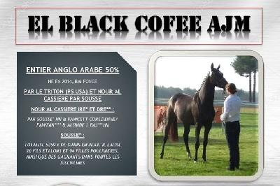 EL BLACK COFEE AJM AA