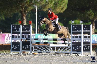 Sologn' pony 2019