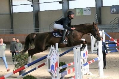 Go Up par Kannan X Diamant de Sémilly
