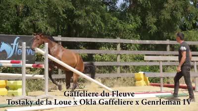 GAFFELIERE DU FLEUVE