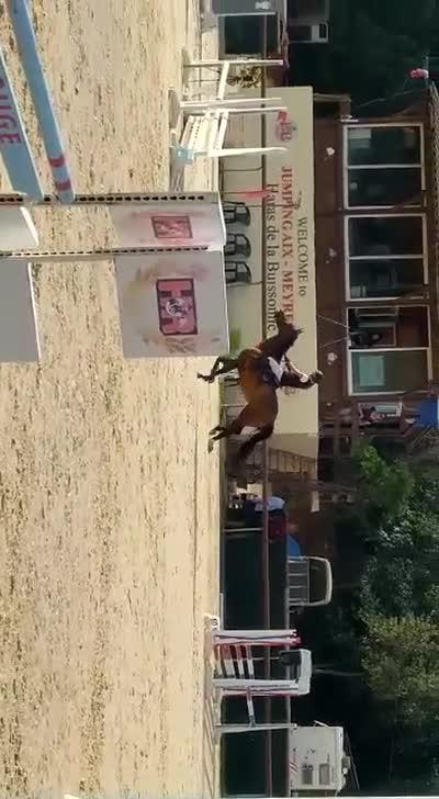 GOLDEN DU JARDIN