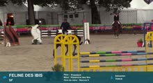 FONTAINEBLEAU FINALE CSO SHF VIDEO - 2020-10-02