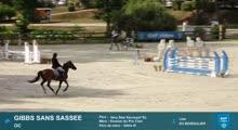BARBASTE SHF VIDEO - 2020-08-11