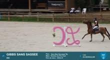 BARBASTE SHF VIDEO - 2020-08-12
