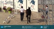 Sologn'Pony - National PFS - 2019-08-22