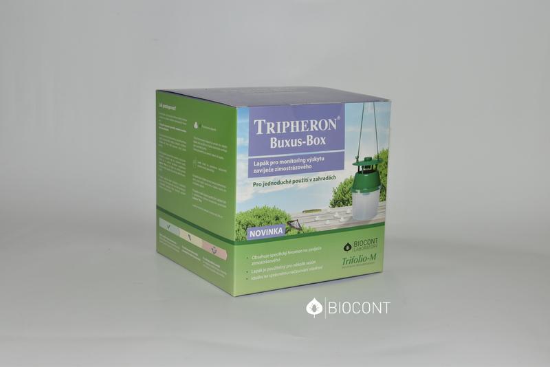 AKCE Tripheron Buxus Box