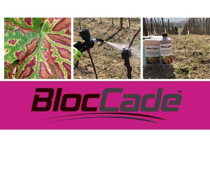 Chraňte vinice před ESCOU použitím BlocCade při řezu