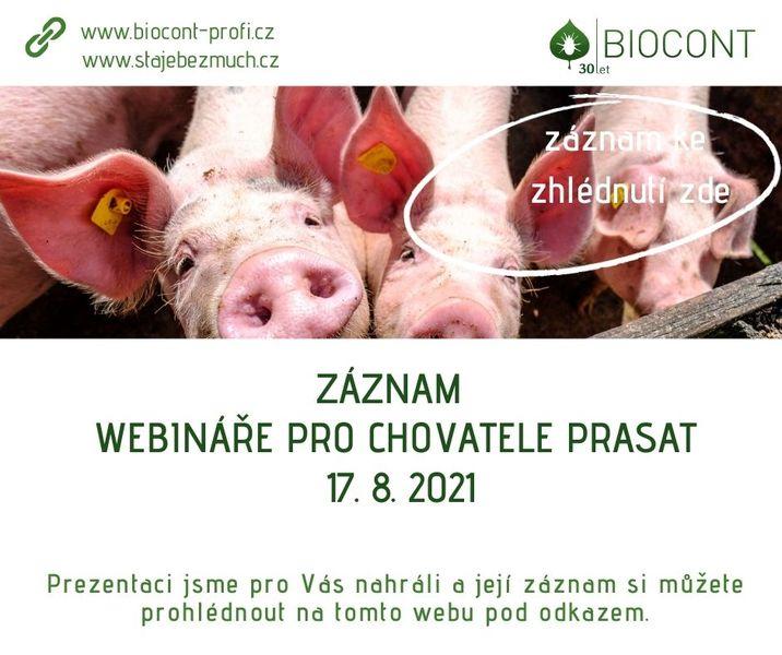 Záznam webináře pro chovatele prasat ze 17. 8. 2021