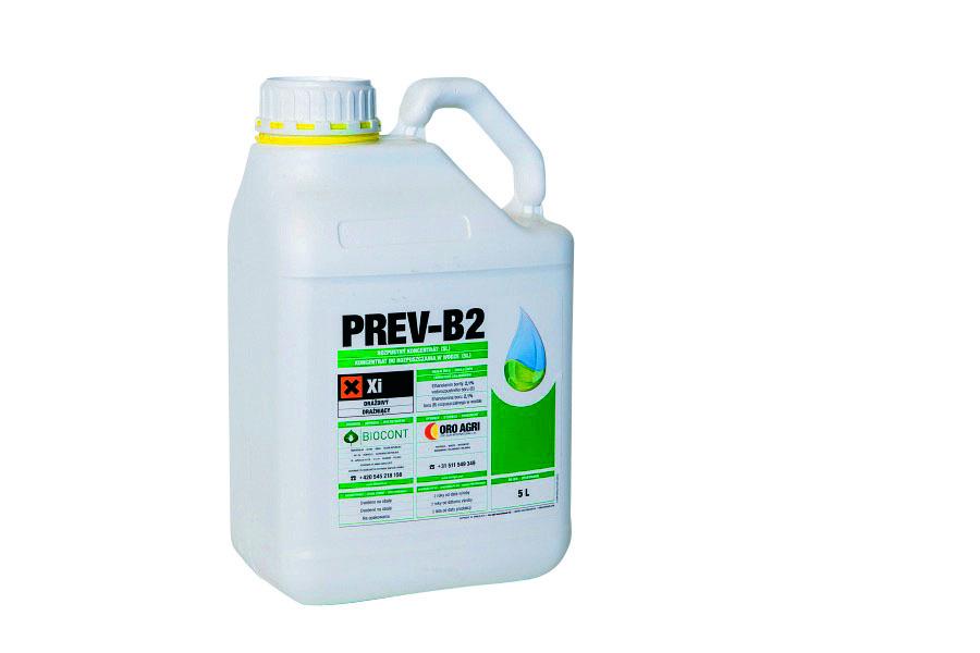 Prev b2
