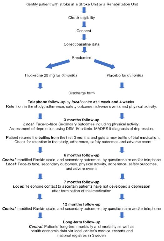 figure 1 flow diagram effects.png
